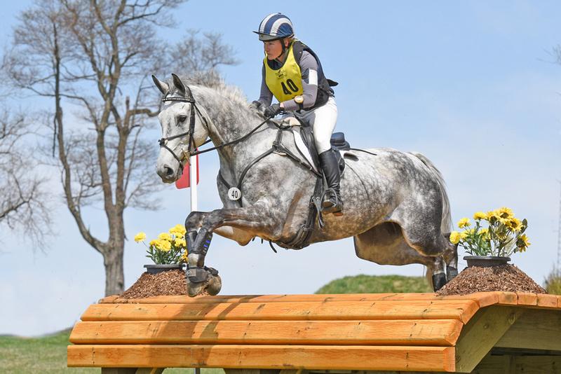 Fair_Hill_Grey_Horse